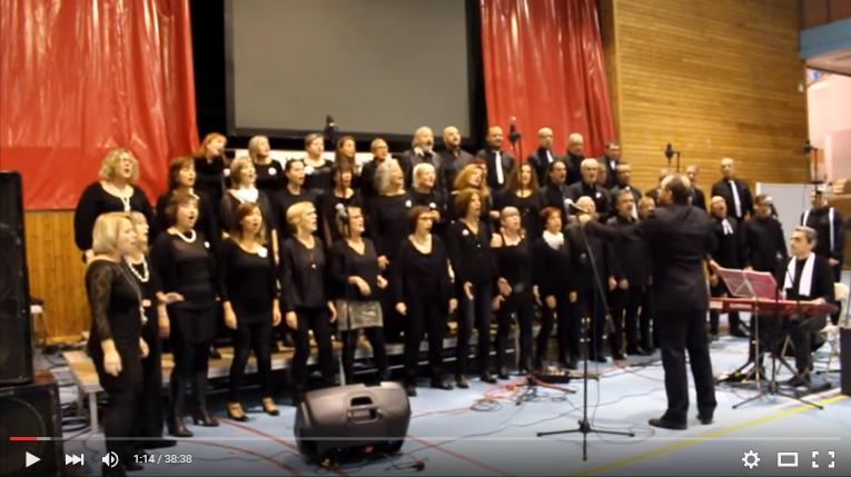 Concert A Benefici De La Marató De TV3 2015, A Sarrià De Ter